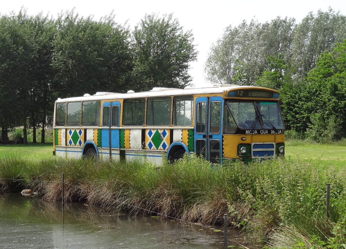 bus giraffenvlakte zooparc overloon